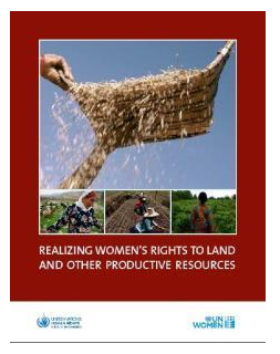 Image - Realising women's rights to land and other productive resources.PNG