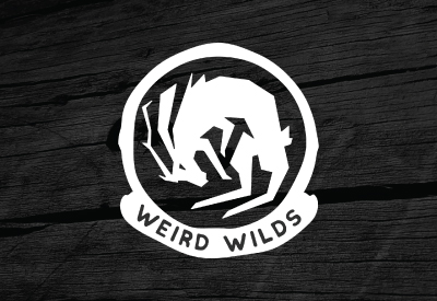 WEIRD WILDS - A personal art project that I am slowly working on based around cryptozoology, supernatural beings, aliens, and other things that go bump in the night.