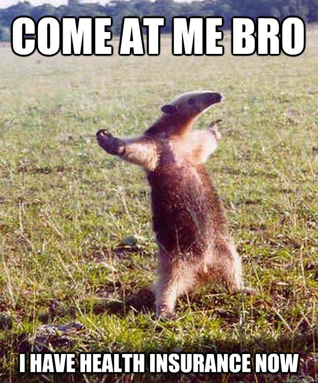 Come at me bro.jpeg