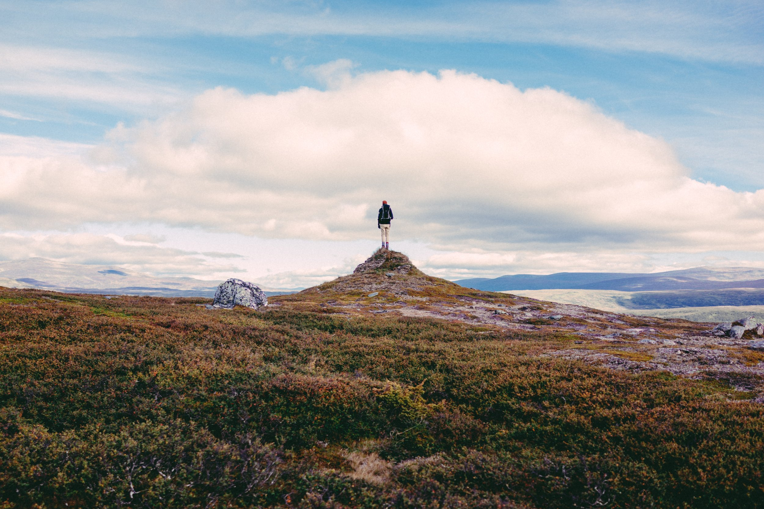 Photo by  nina lindgren on  Unsplash