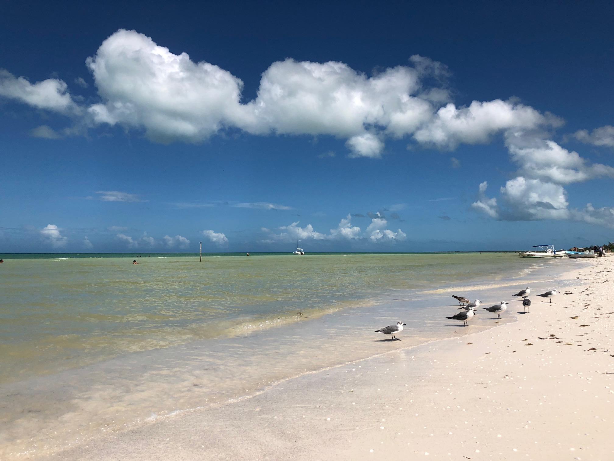 Holbox beach 3.jpg