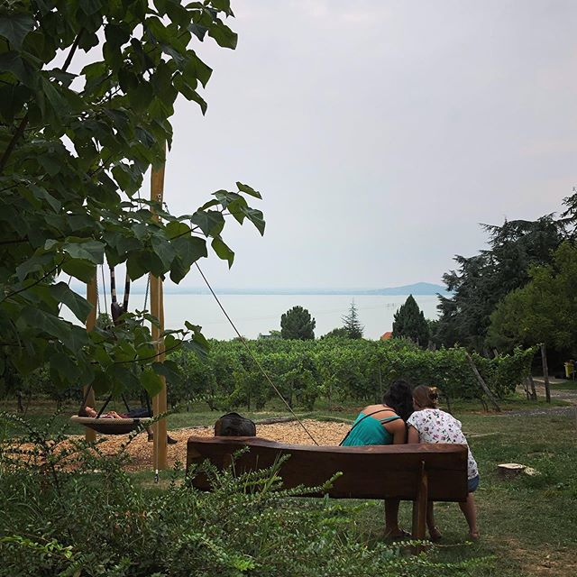 We always manage to say goodbye to the season at Balaton @farkasevi01 @martapjeczka . . . #cloudyday #balaton #view #északipart