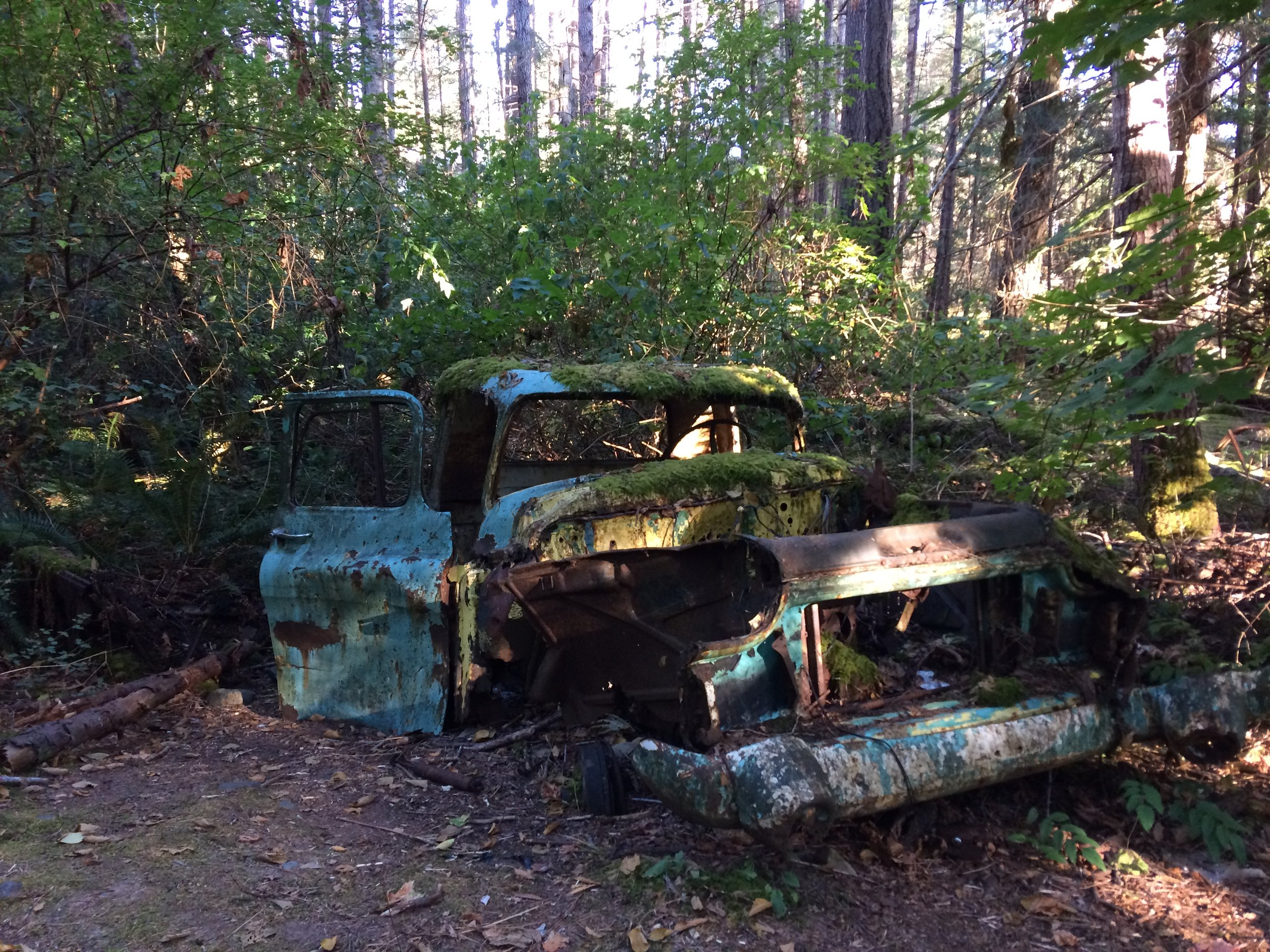 One of the joys of painting en plein air is to wander aimlessly until something catches my eye, and I stop to paint it. On Galeano Island, I stumbled across this truck  embalmed in moss and sheltered by spires of alder and doug fir.