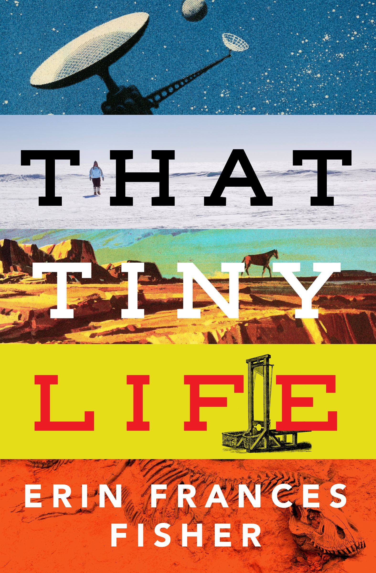 Fisher, Erin Frances - That Tiny Life - Final cover.jpg