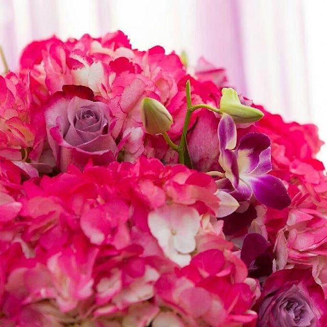 """A flower doesn't love you or hate you, it just exists"" -Mike White #RoyalBashEvents #RoyalbashEventsNyc #Nyceventplanners #GirlsNight #LadiesNight #Flowers #Centerpiece #Purple #Pink #WineNight #BirthdayParties #Weddings #KidsParties  #BabyShowers #GenderReveal #PrivateEvents"