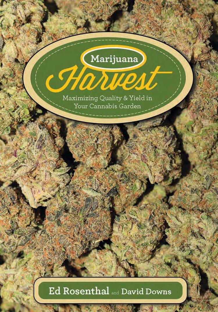 Harvest-Ed_Rosenthal.jpg