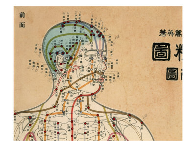 acupuncture-victoria-meridians.jpg