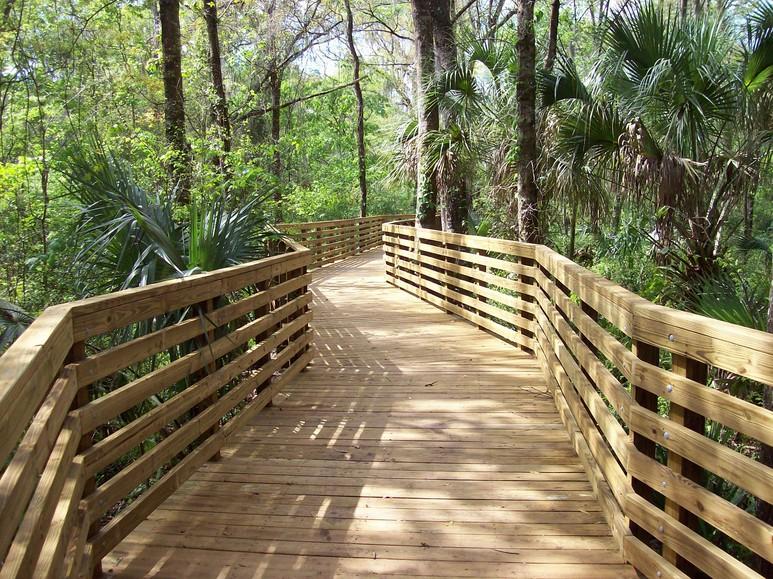 Eureka Springs Park, TAMPA FL