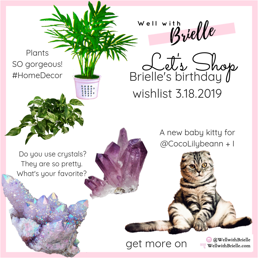 lets shop- Brielle's birthday  wishlist 3.18.2019-WellwithBrielle.com-WellwithBrielle-instagram.png
