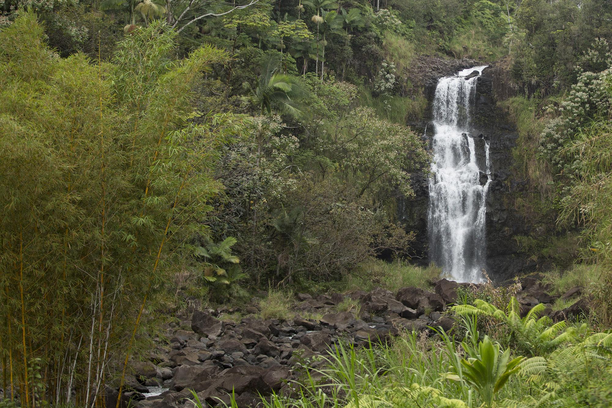 falls from bamboo garden - 2000x1333.jpg
