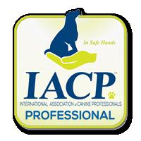 iacp-logo-professional-member.png