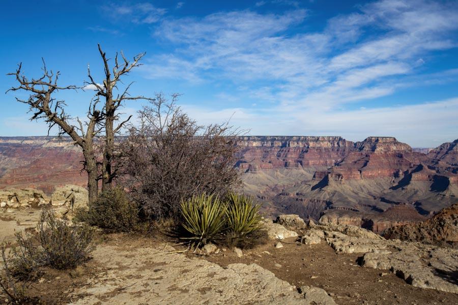 Pratt_Grand-Canyon-Arizona_05.jpg