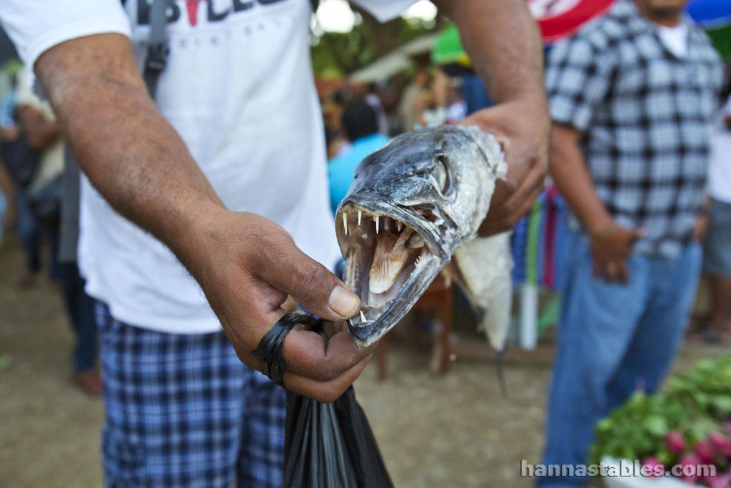 Belize-market-S37.jpg