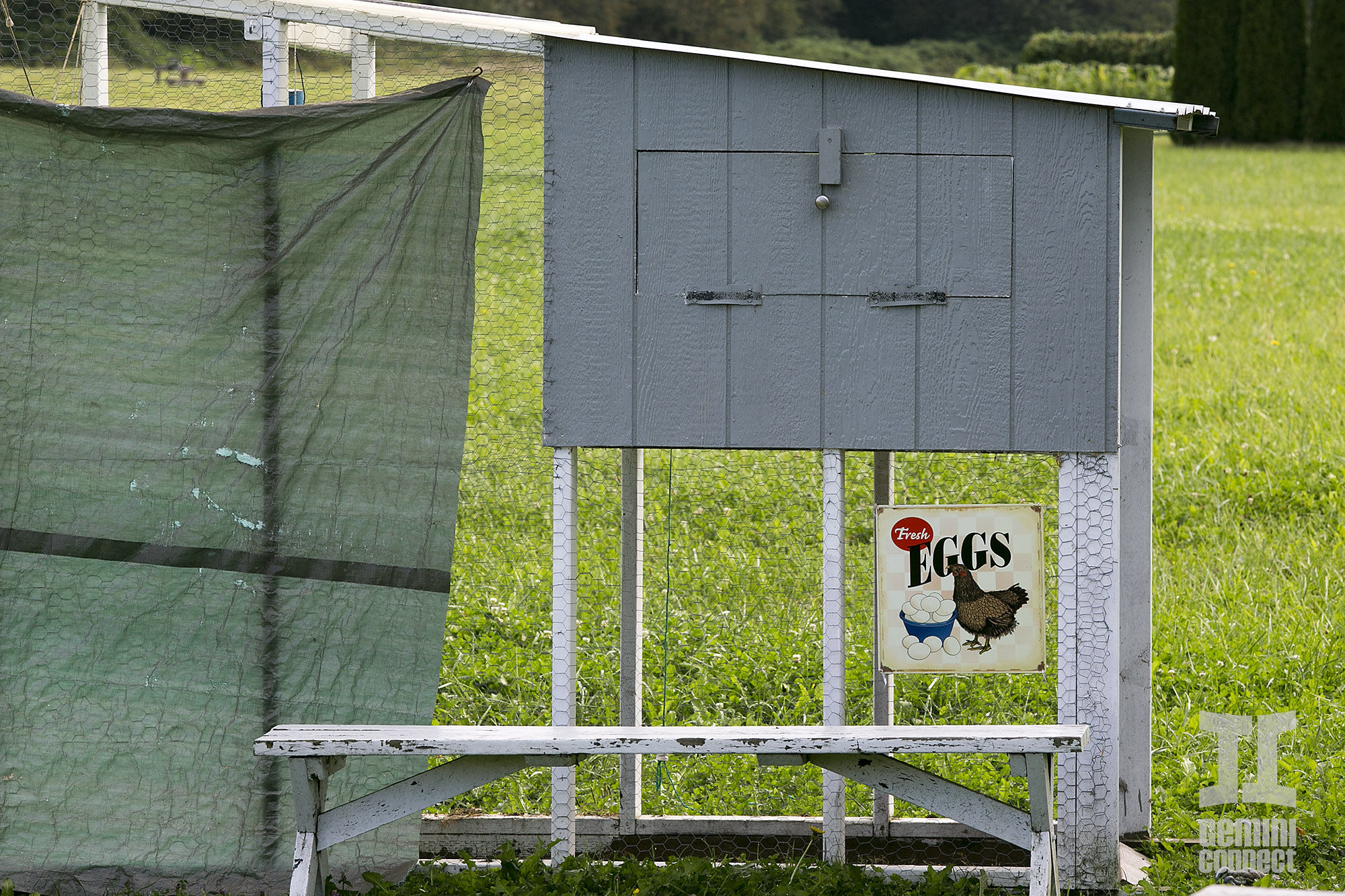 HB-Farm-157.jpg