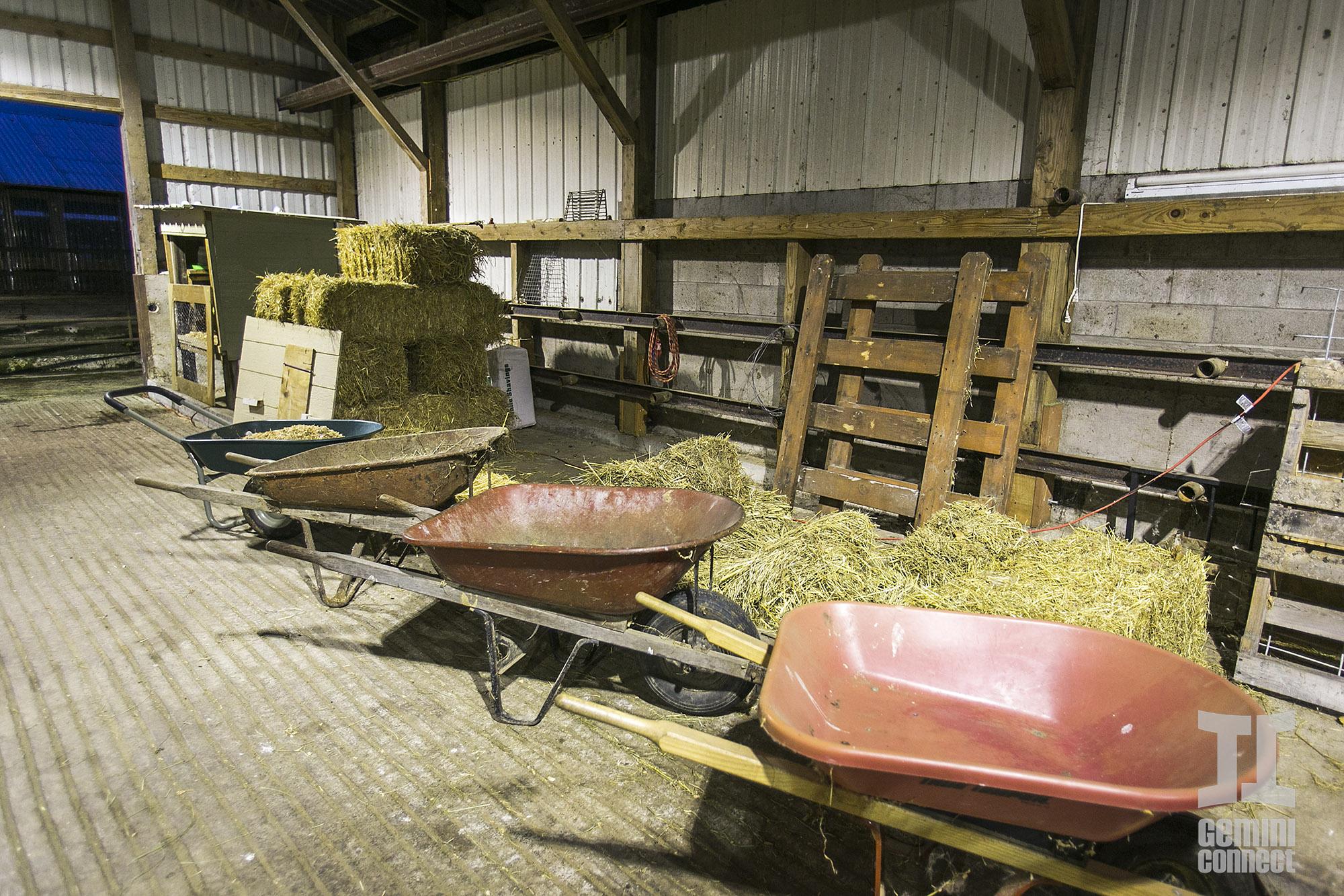 HB-Farm-41.jpg