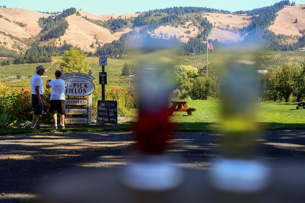 Hood-Gorge-Oregon-Road-Trip-29.jpg