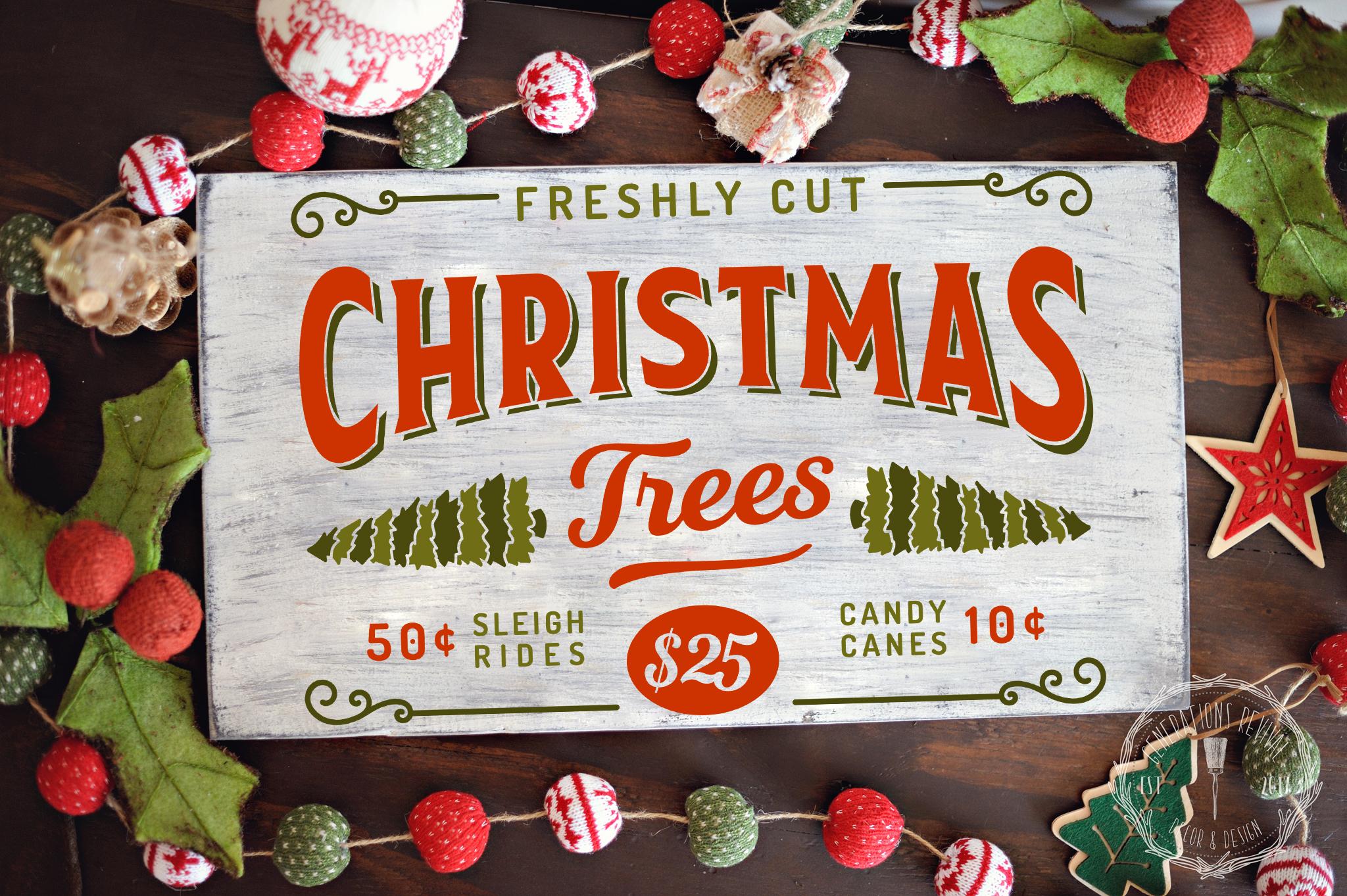 Freshly Cut Christmas Trees.jpg