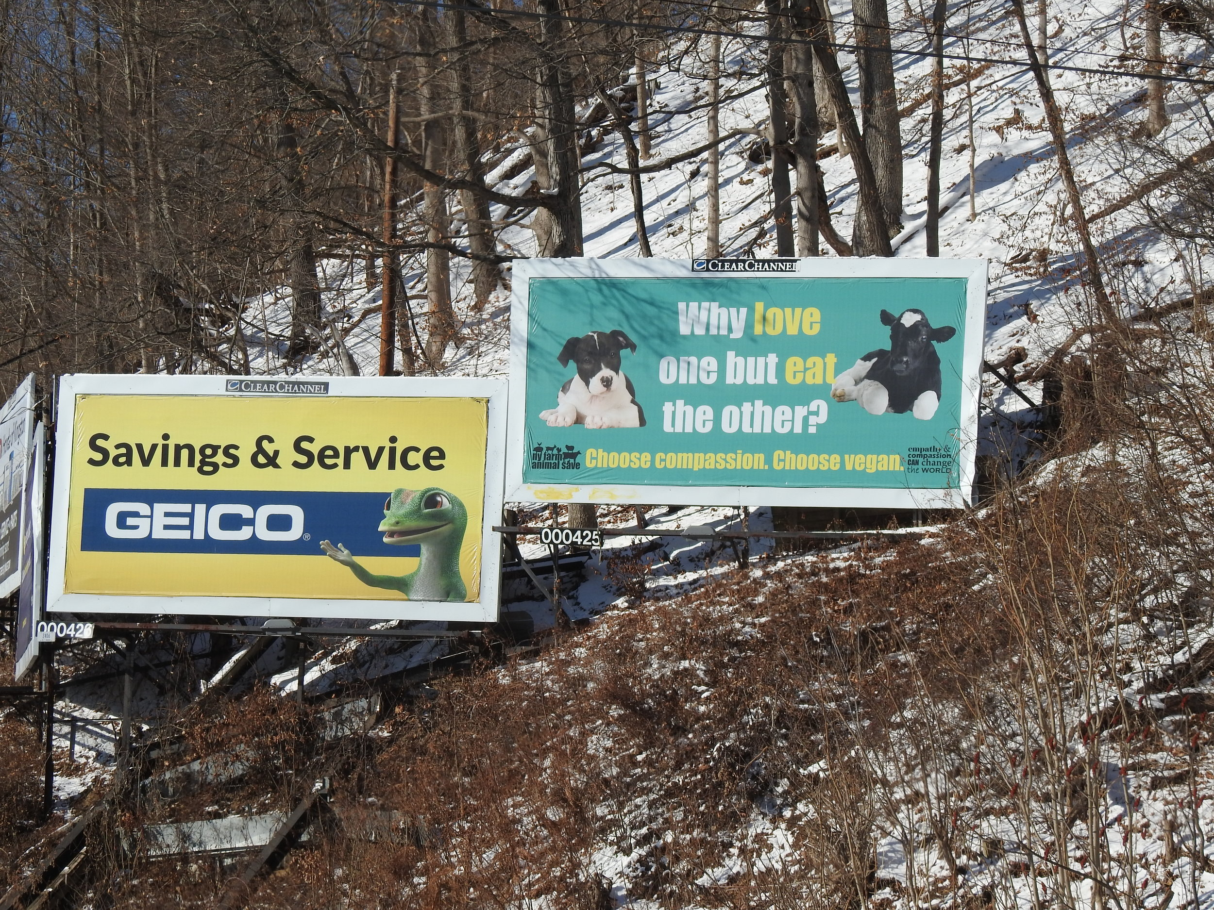 Hudson Valley billboard on Route 28, 2017