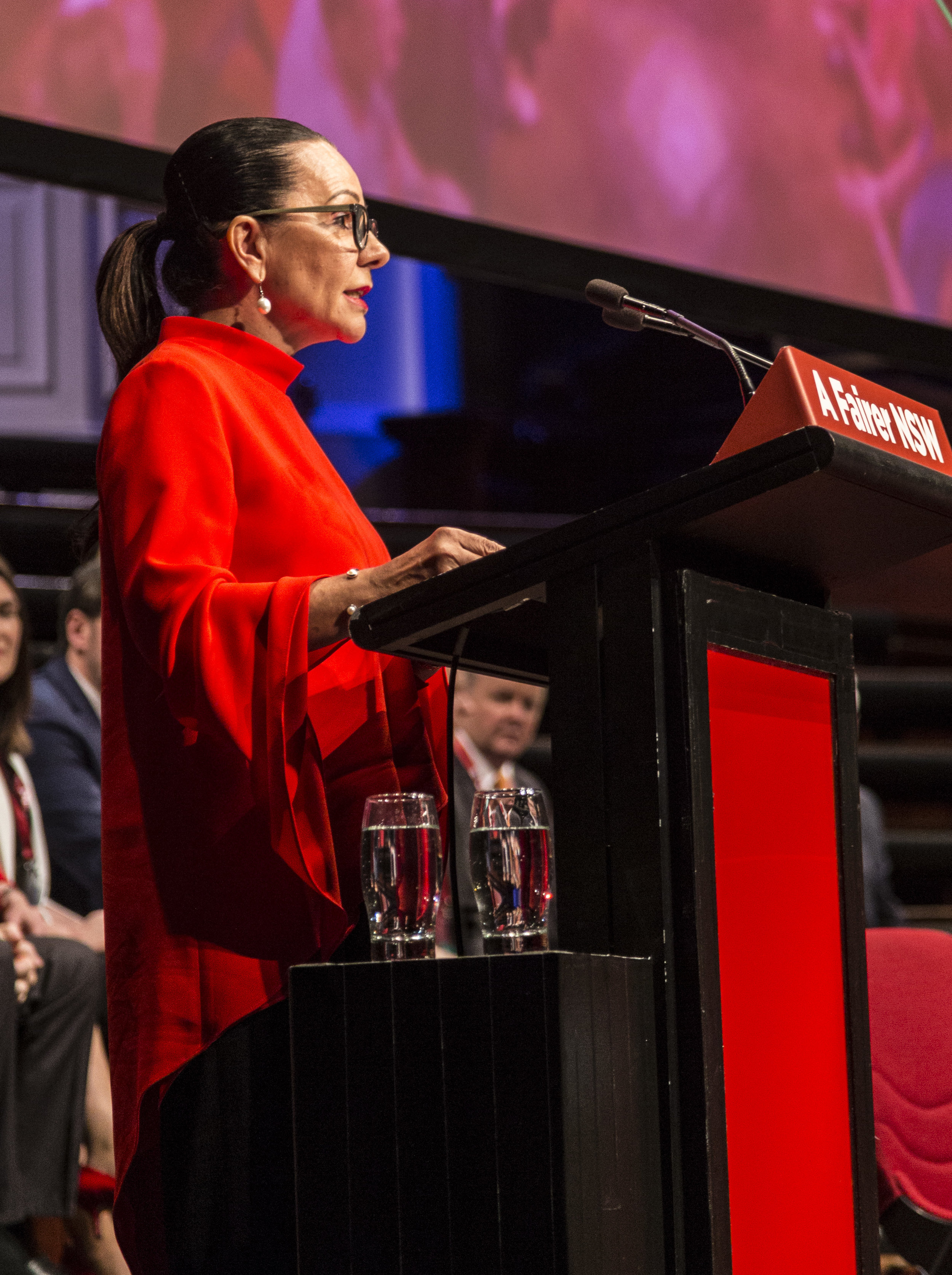 Linda at the NSW ALP state conference, 2017