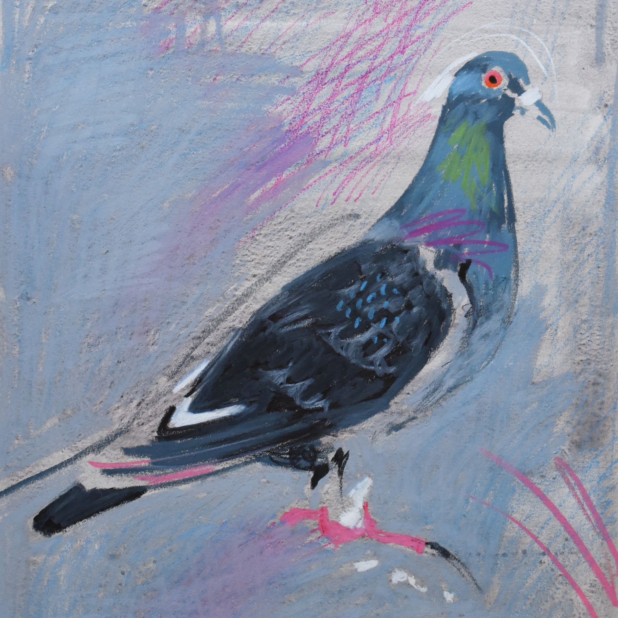 Painting of a pigeon using crayon and acrylic wash on art paper