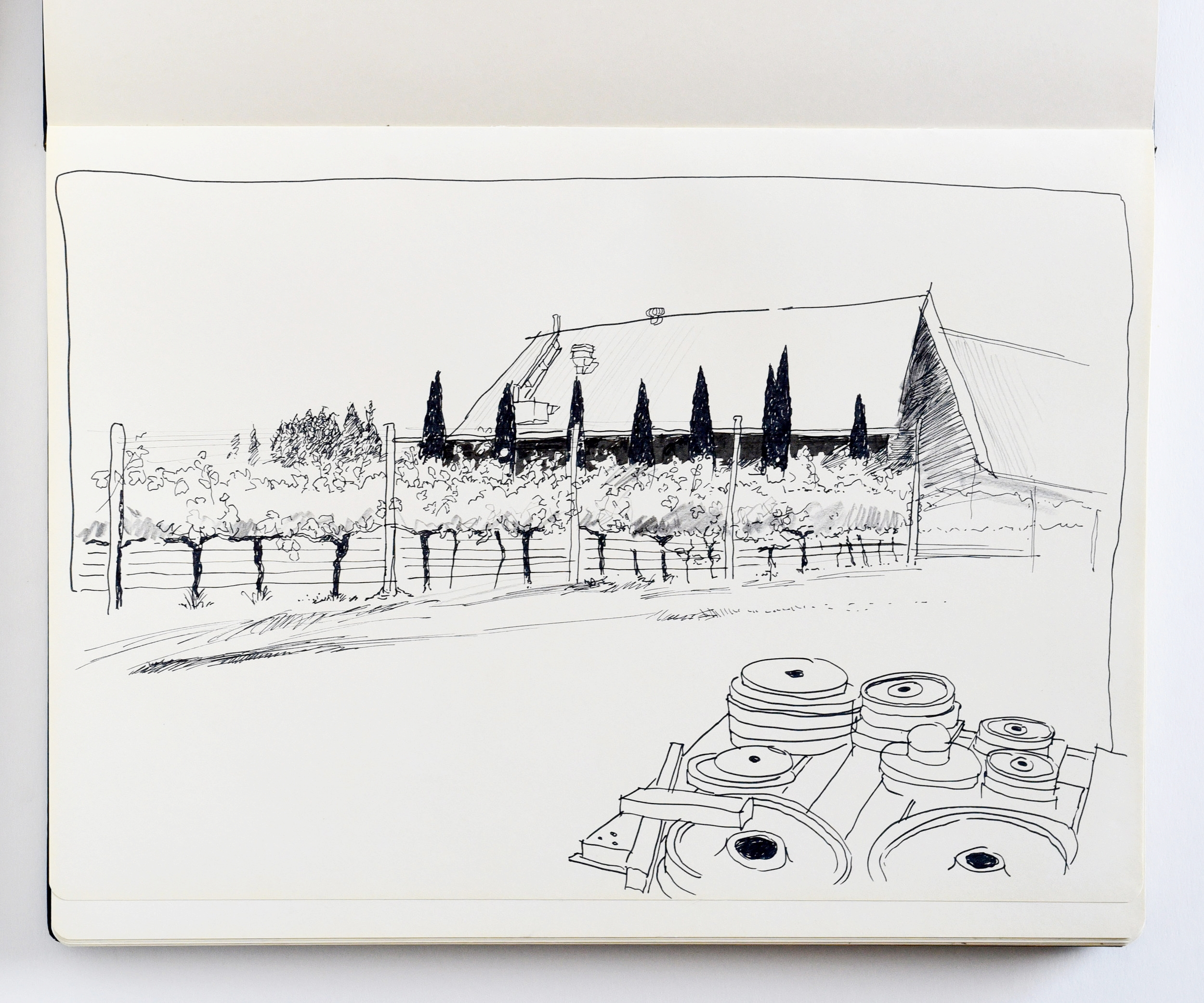 Drawing and view of Castagna Vineyard in Beechworth Victoria
