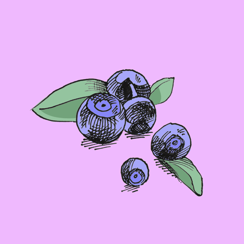 Food illustration of acai.
