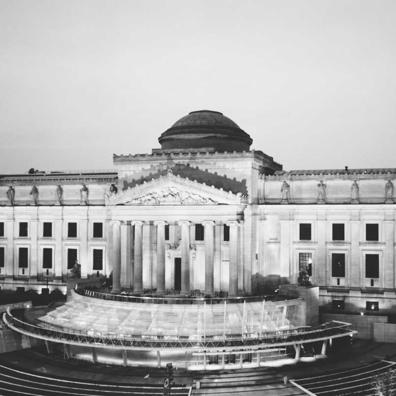 the brooklyn museum -