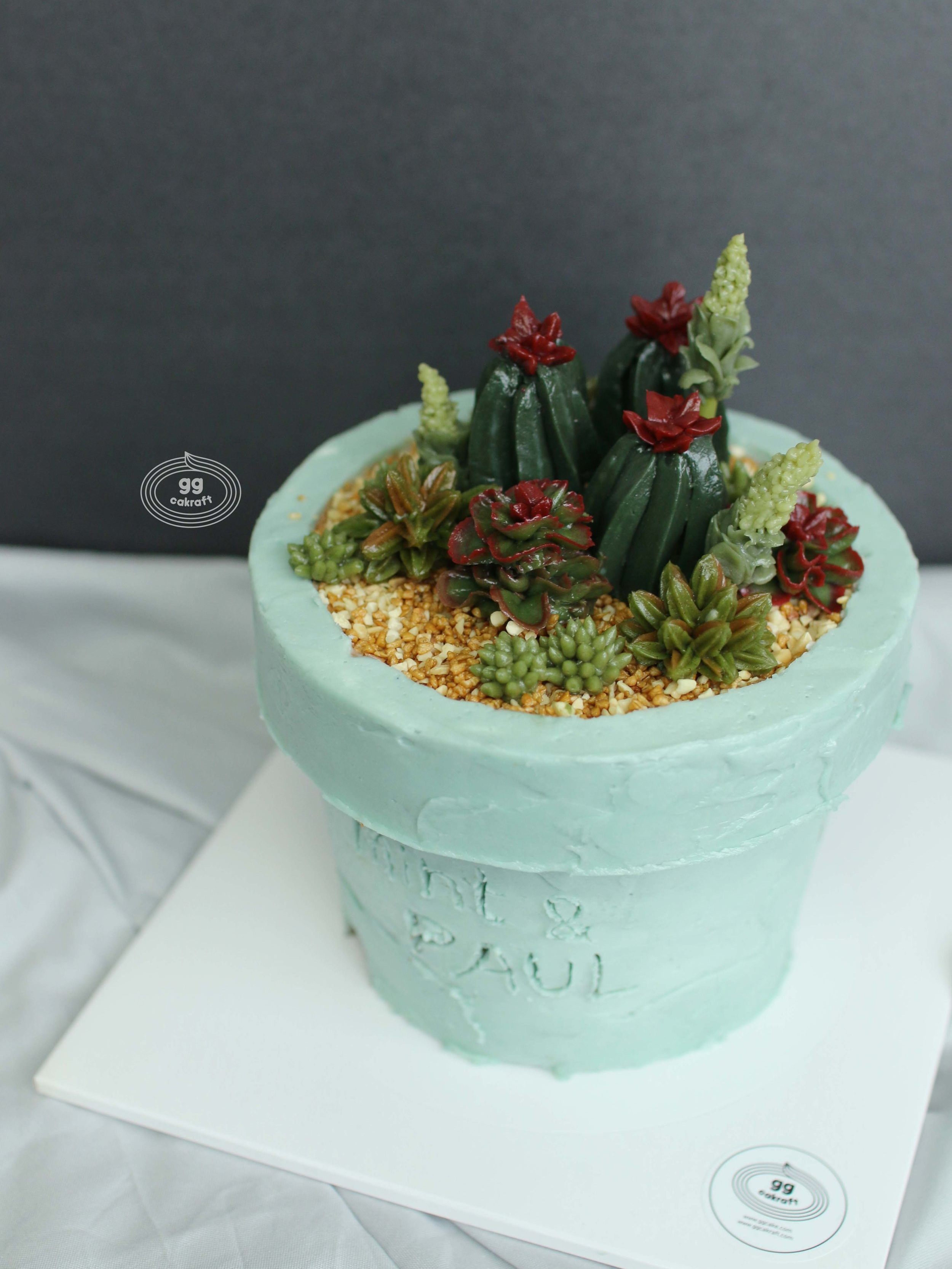 Day 2   - Flower pot icing (Real cake)  - 5 kinds of Succulent