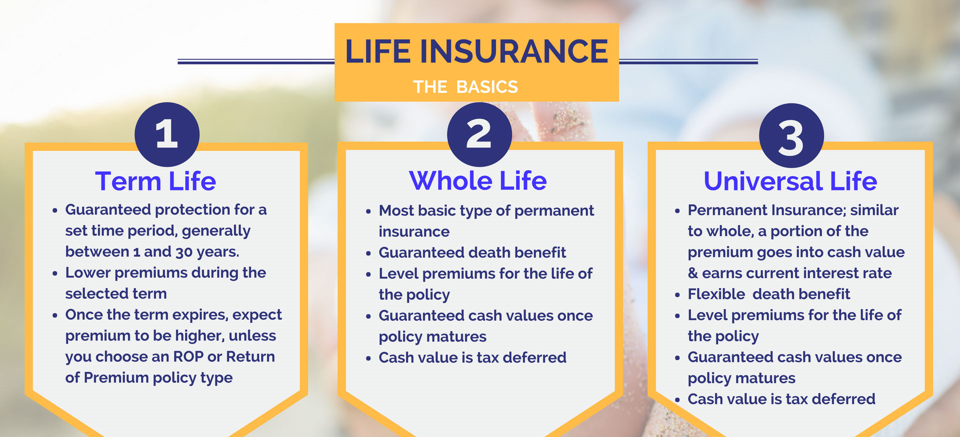 Life-Insurance-the-basics.png