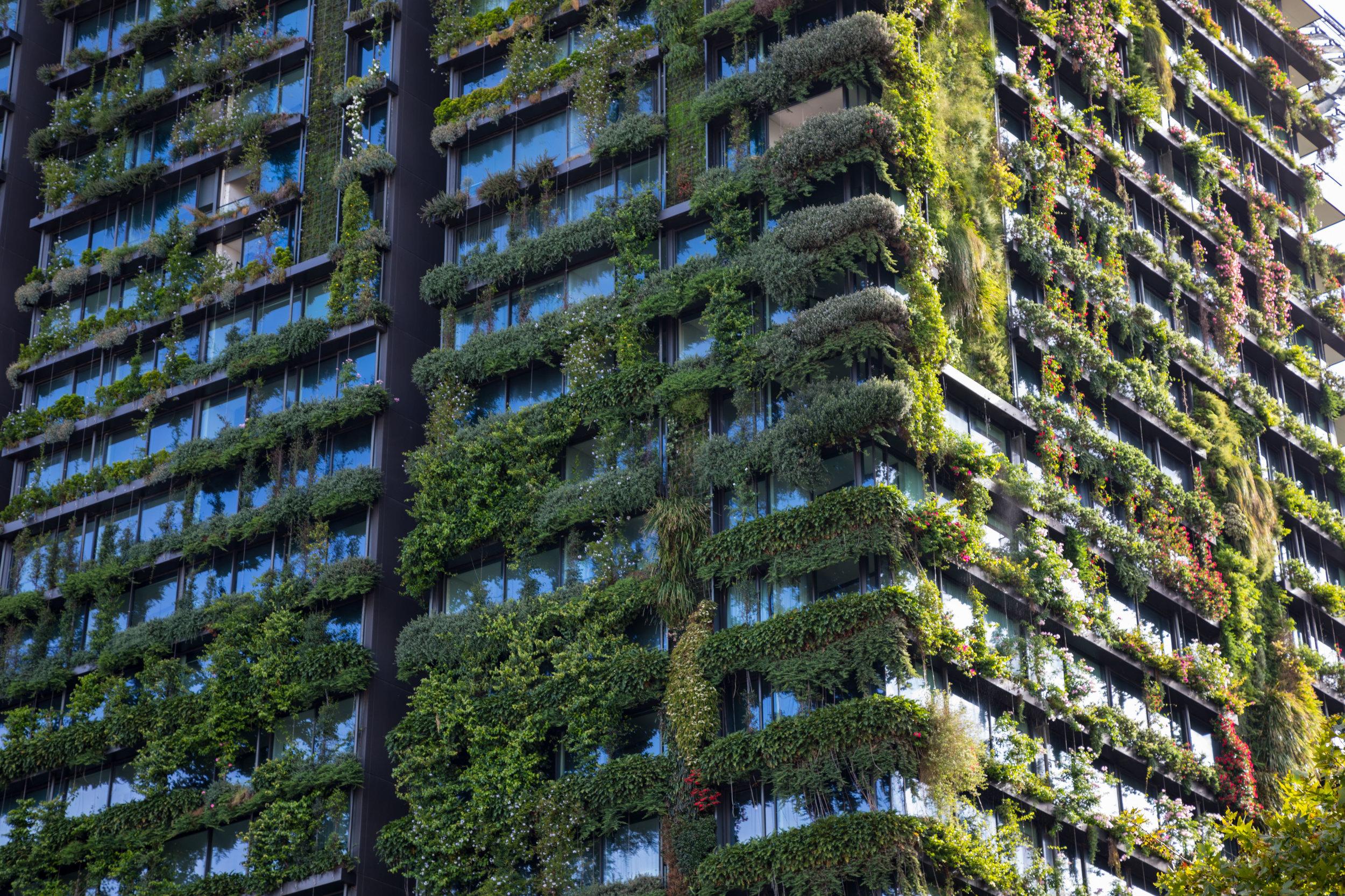 simple_green_building.jpg