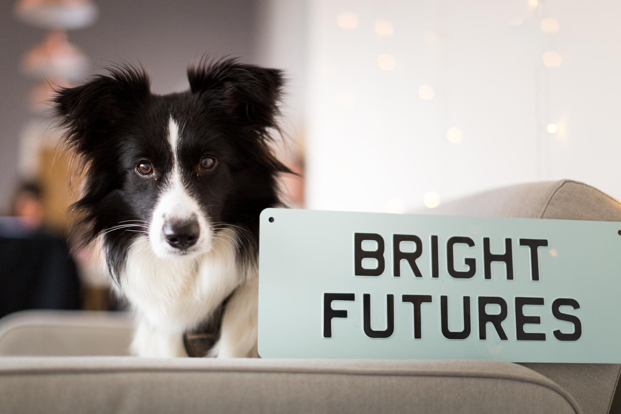 BRIGHT-FUTURES-CONSULTANCY-310118-0011.jpg