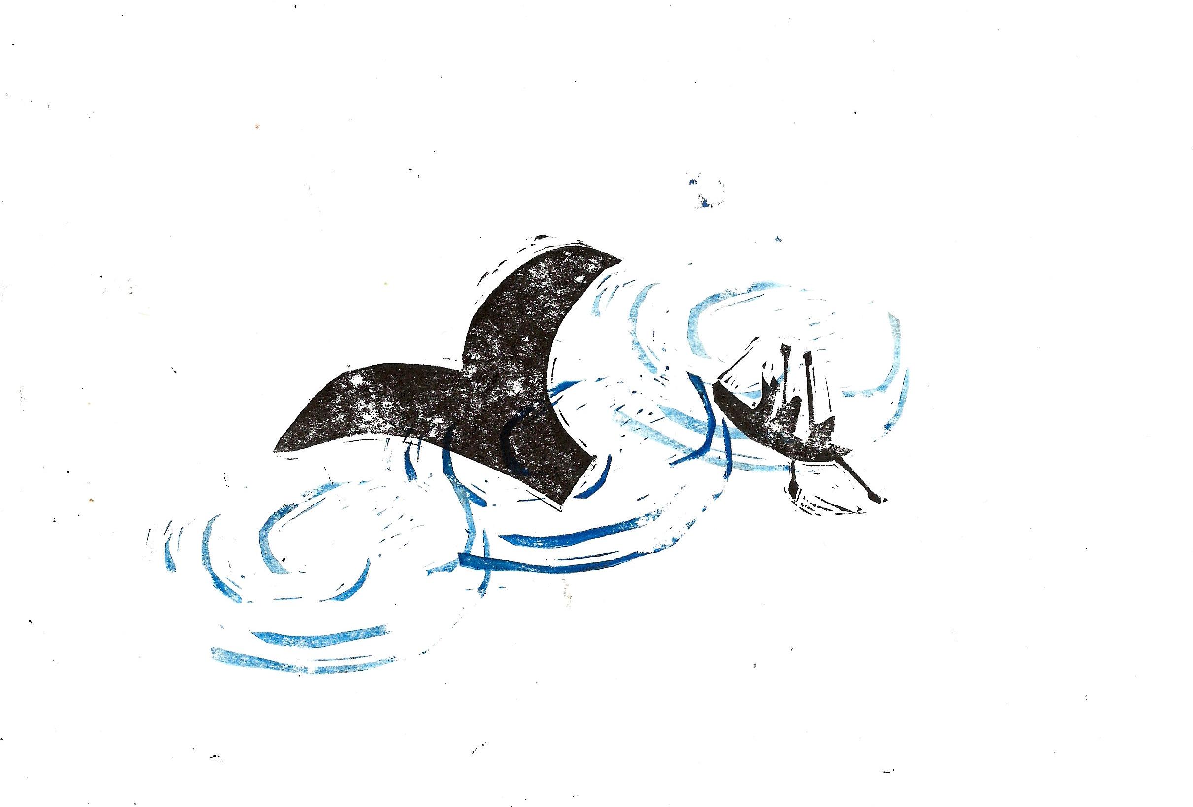 VictoriaWillmott whale 3.jpeg