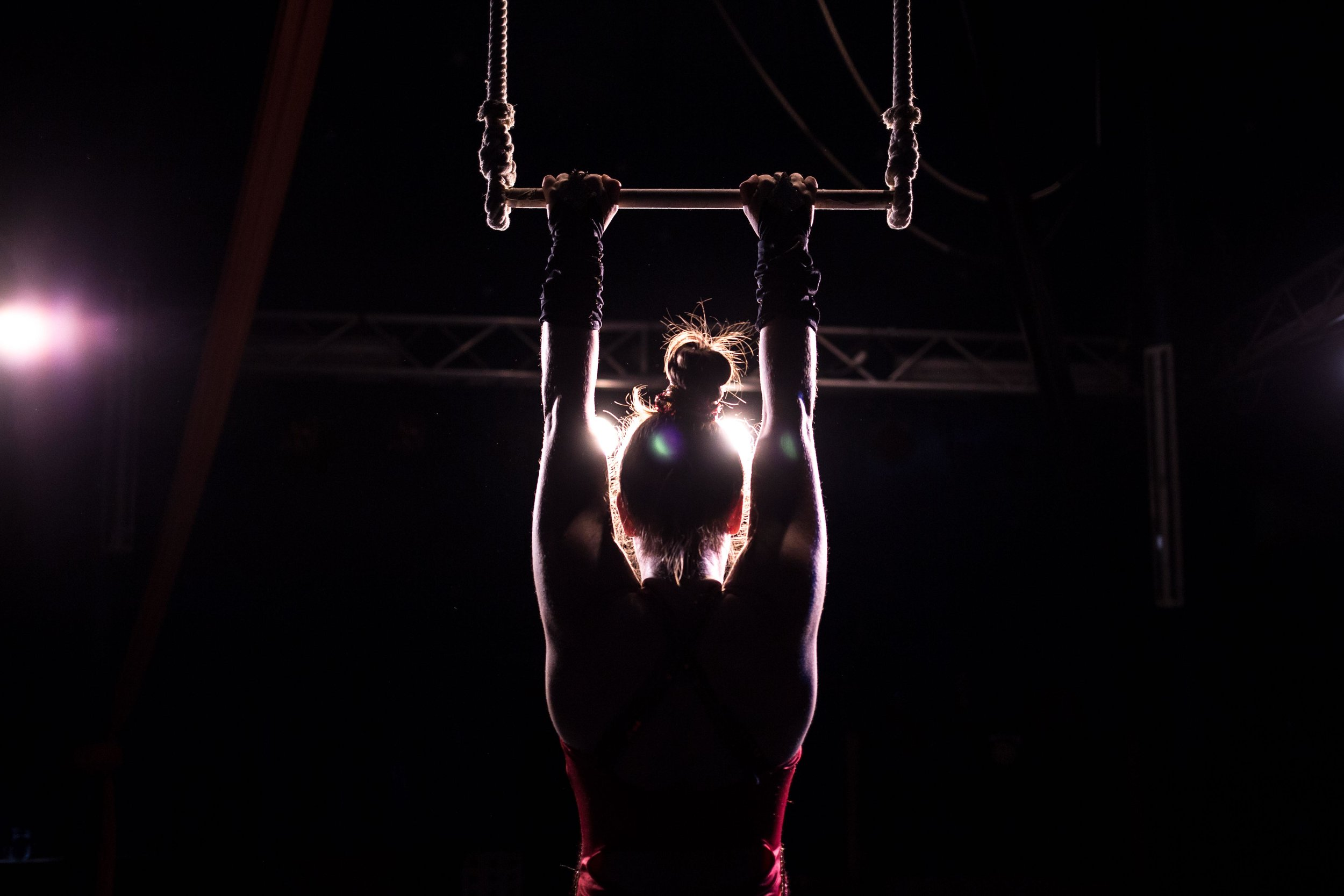 Trapeze Artist Training in Berlin