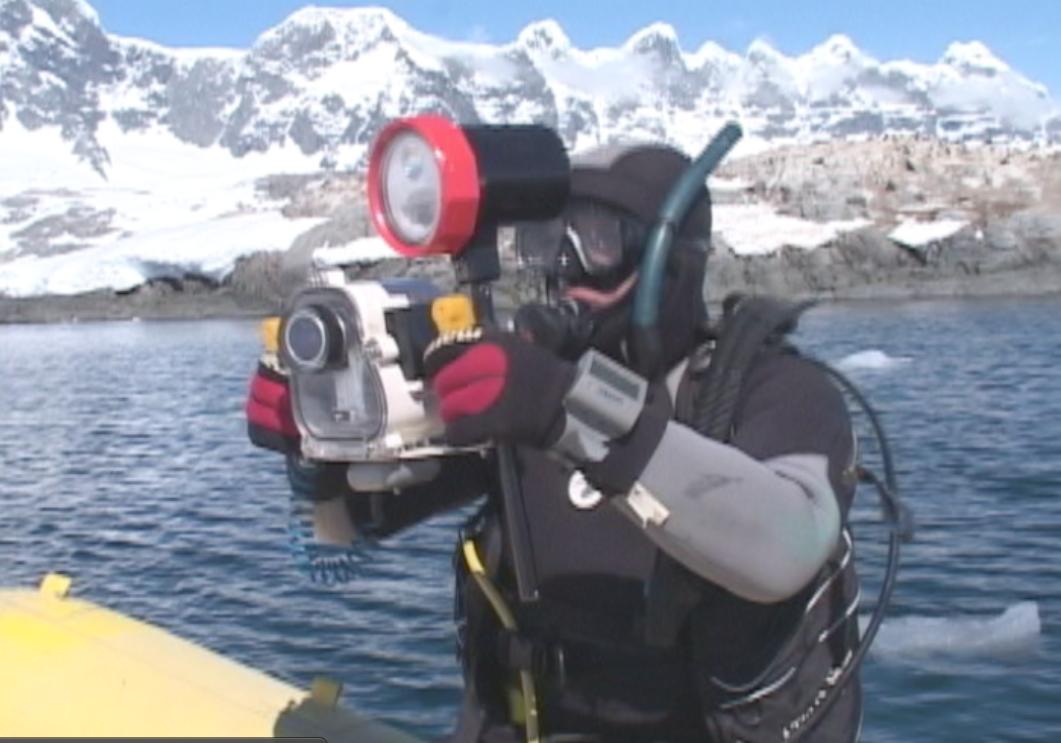 Mergulhando na Antártica para documentar a foca leopardo. foto Lawrence Whaba.