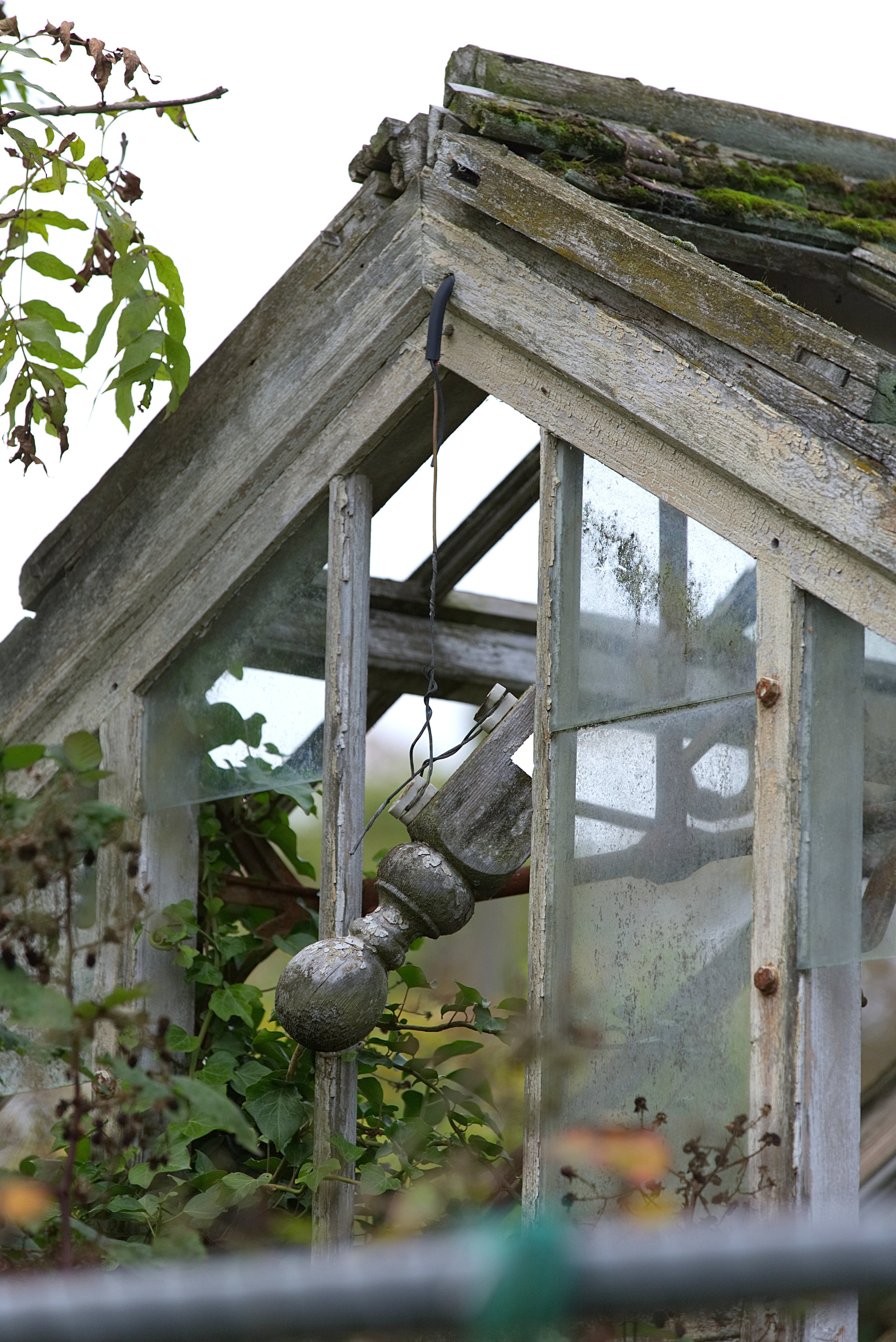 A Variety of Glasshouses