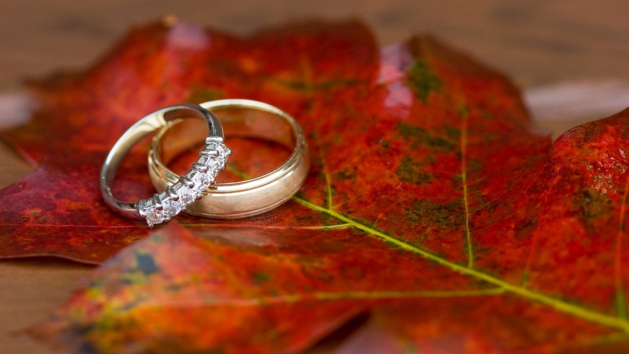 autumn-wedding-rings.jpg