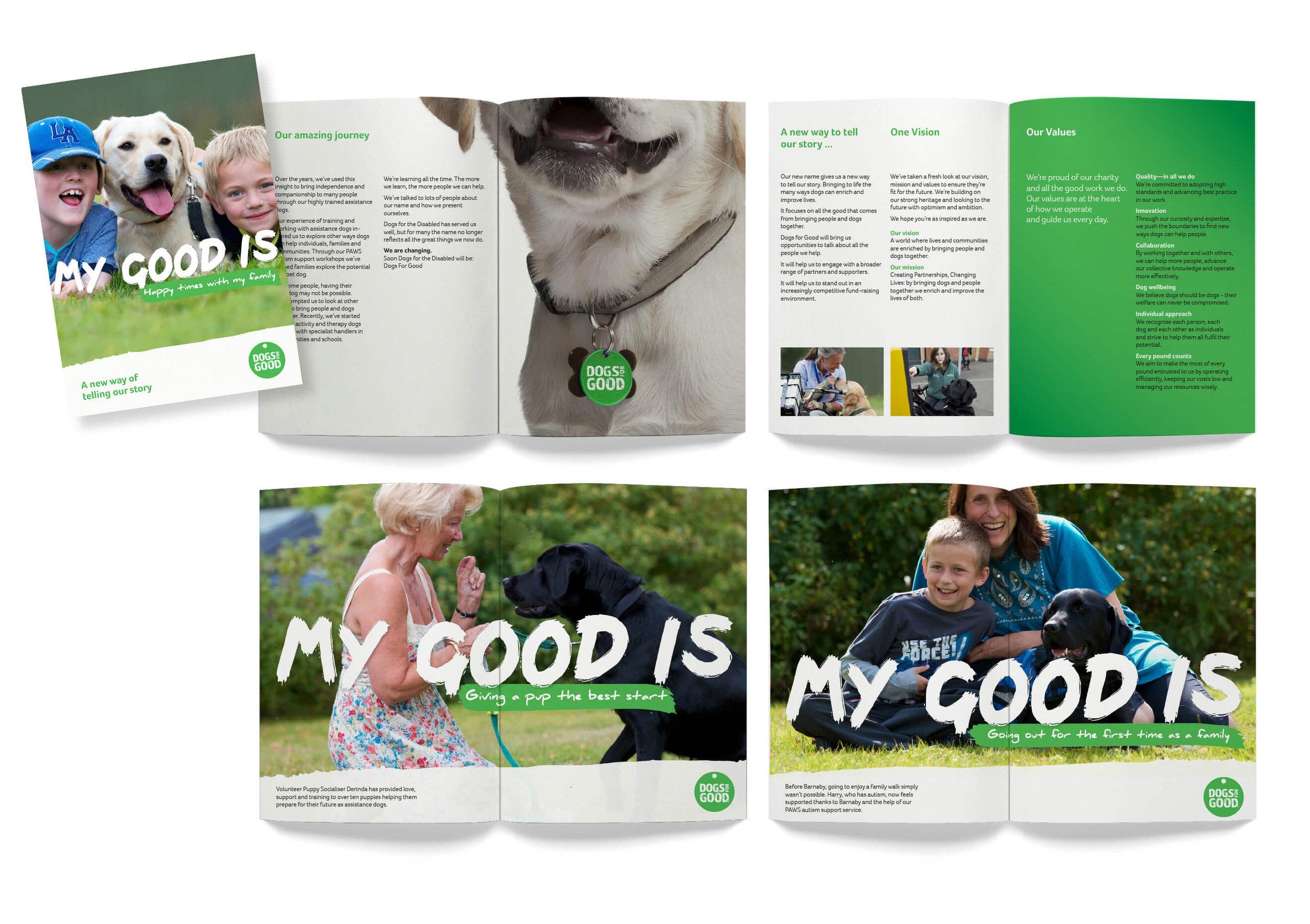 DFG_brochure.jpg