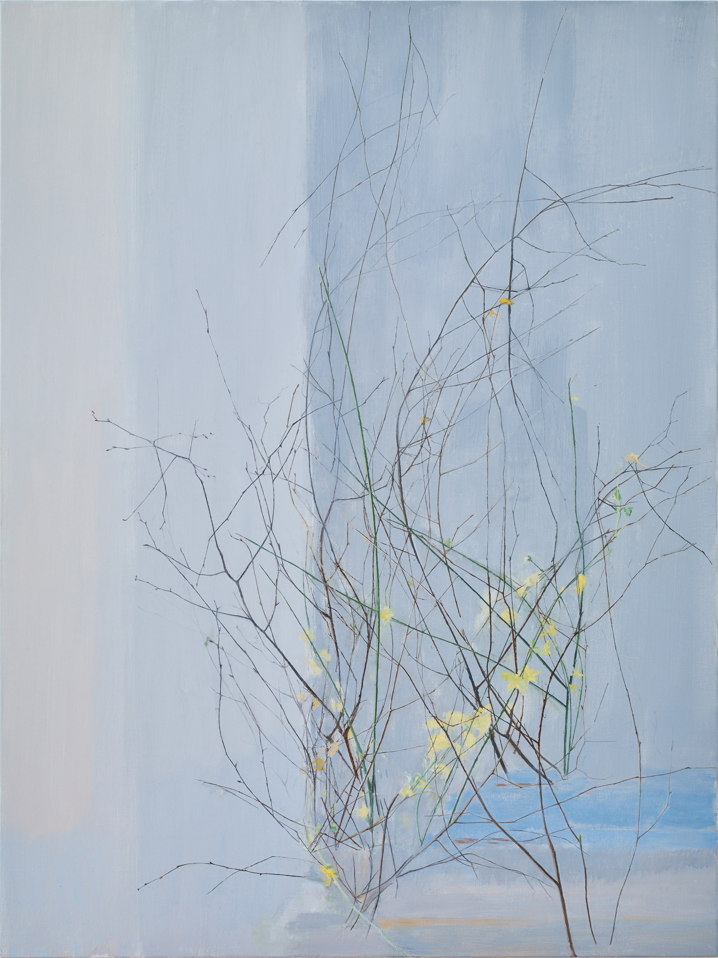 January Colour, 2018, oil on canvas, 120 x 90 cm