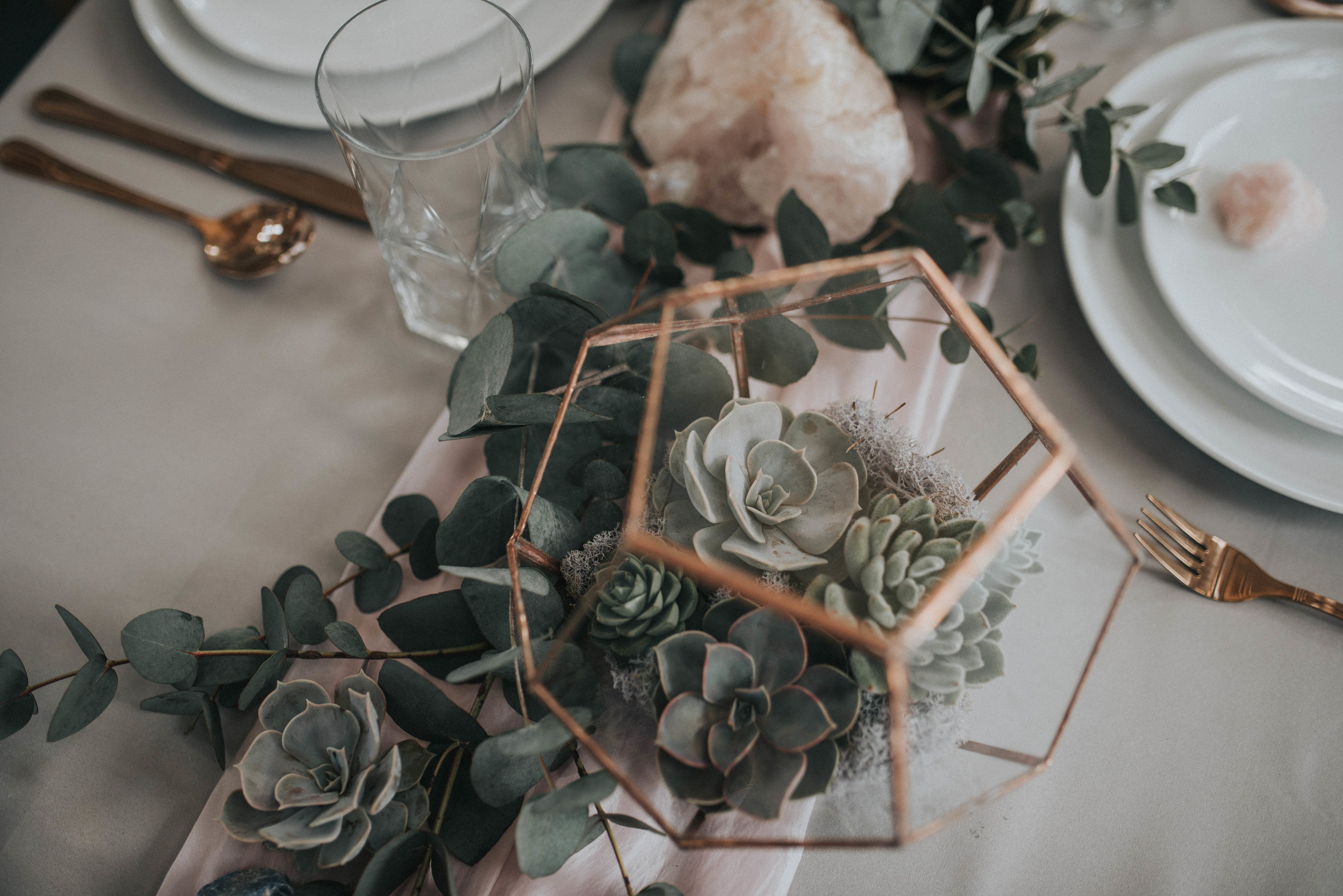 Blush & Copper -