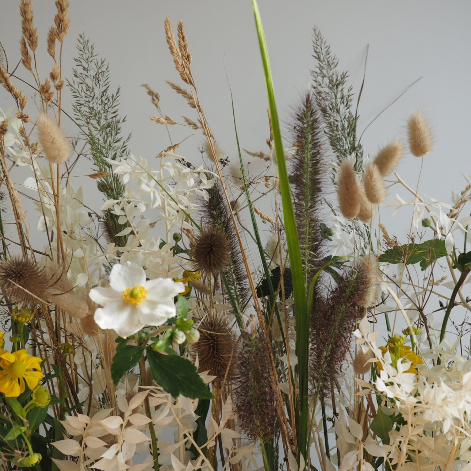 Events & Weekly flowers -