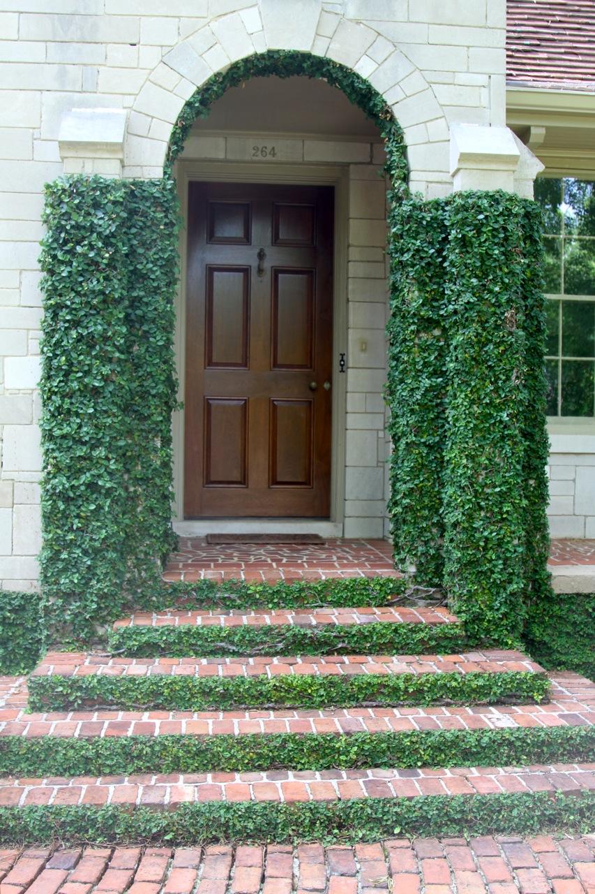 clark garden prof pics 033.jpg