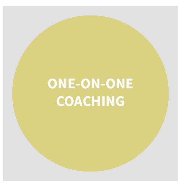 oneonone_coaching_585x605.png