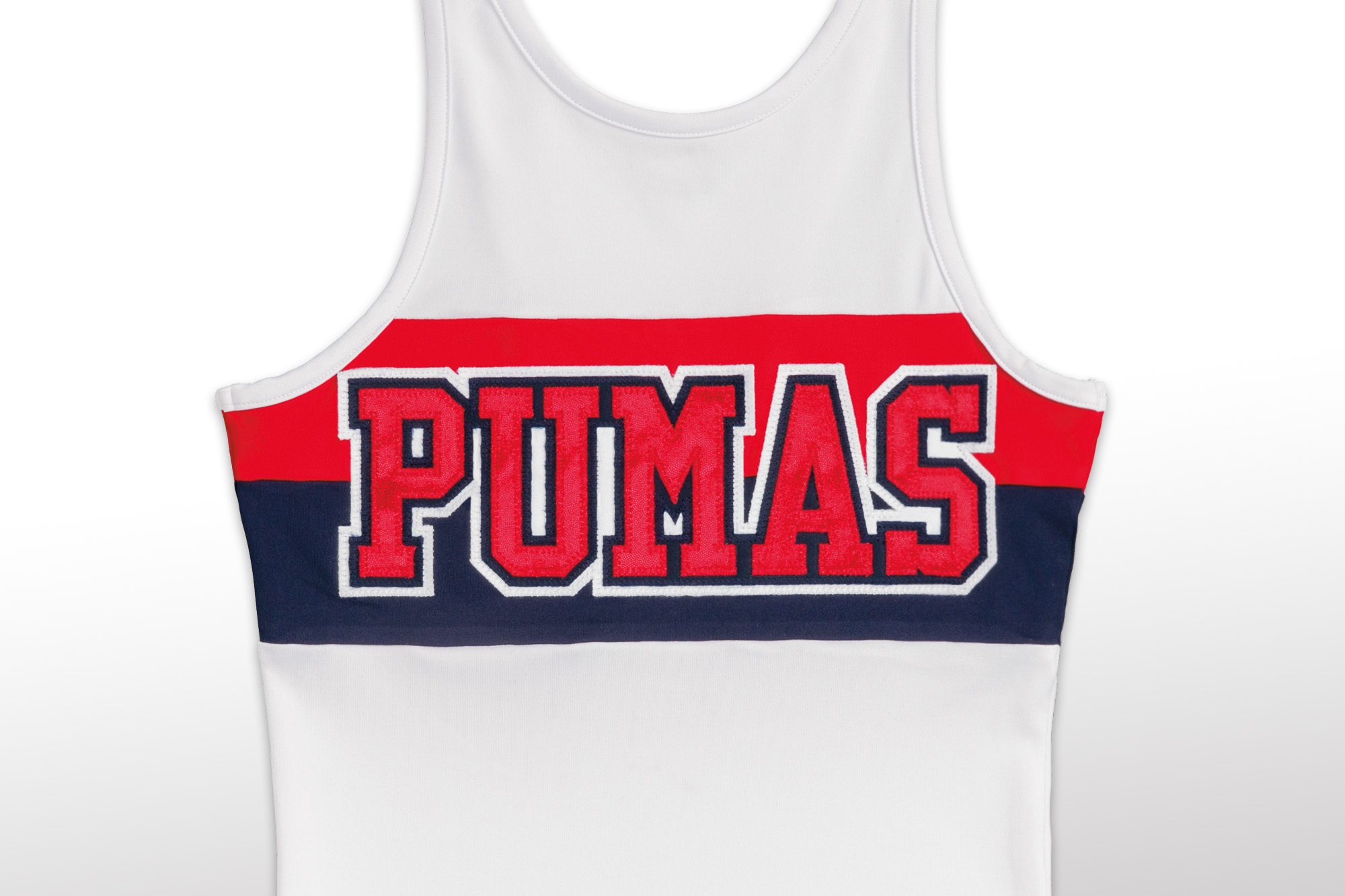 PumasFlt.jpg