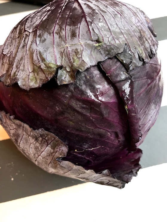 Can we just pause for a minute and look at the beauty in a head of purple cabbage...