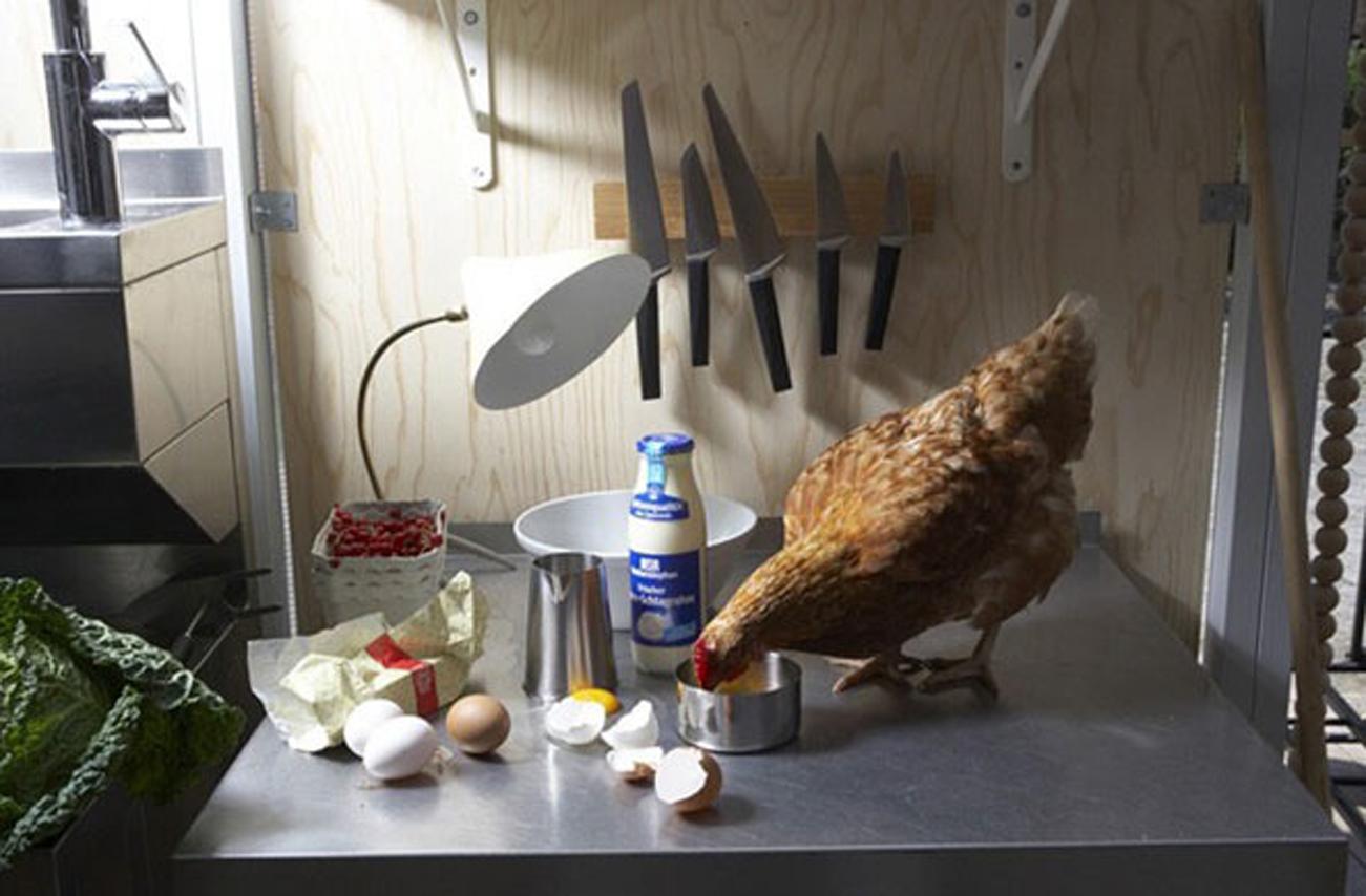 vg-fish-flesh-and-fowl-008.jpg