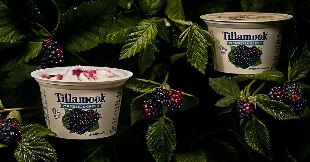 Tillamook_050118_2785_Yogurt_RGB.jpg