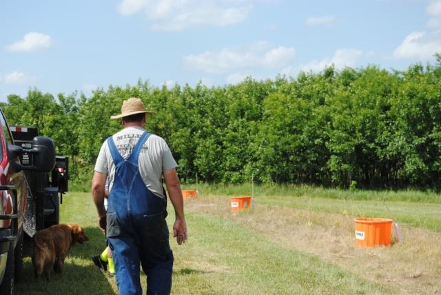 Pecan Tree Management