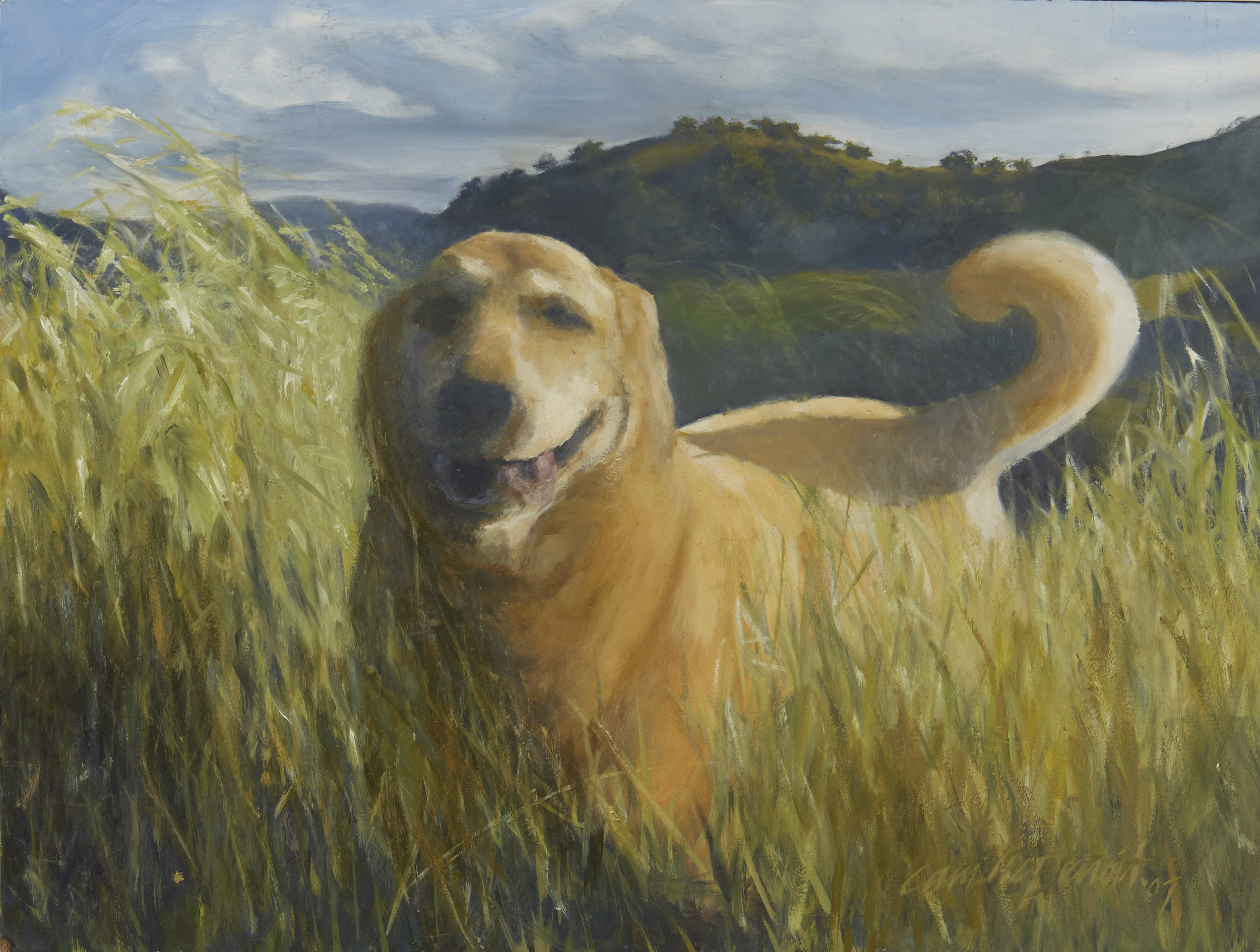"""Fred Dog"" 18 x 20"" (2011)   Fred pictured here loved to run in the foothills of Mount Diablo near his home in Walnut Creek, CA"