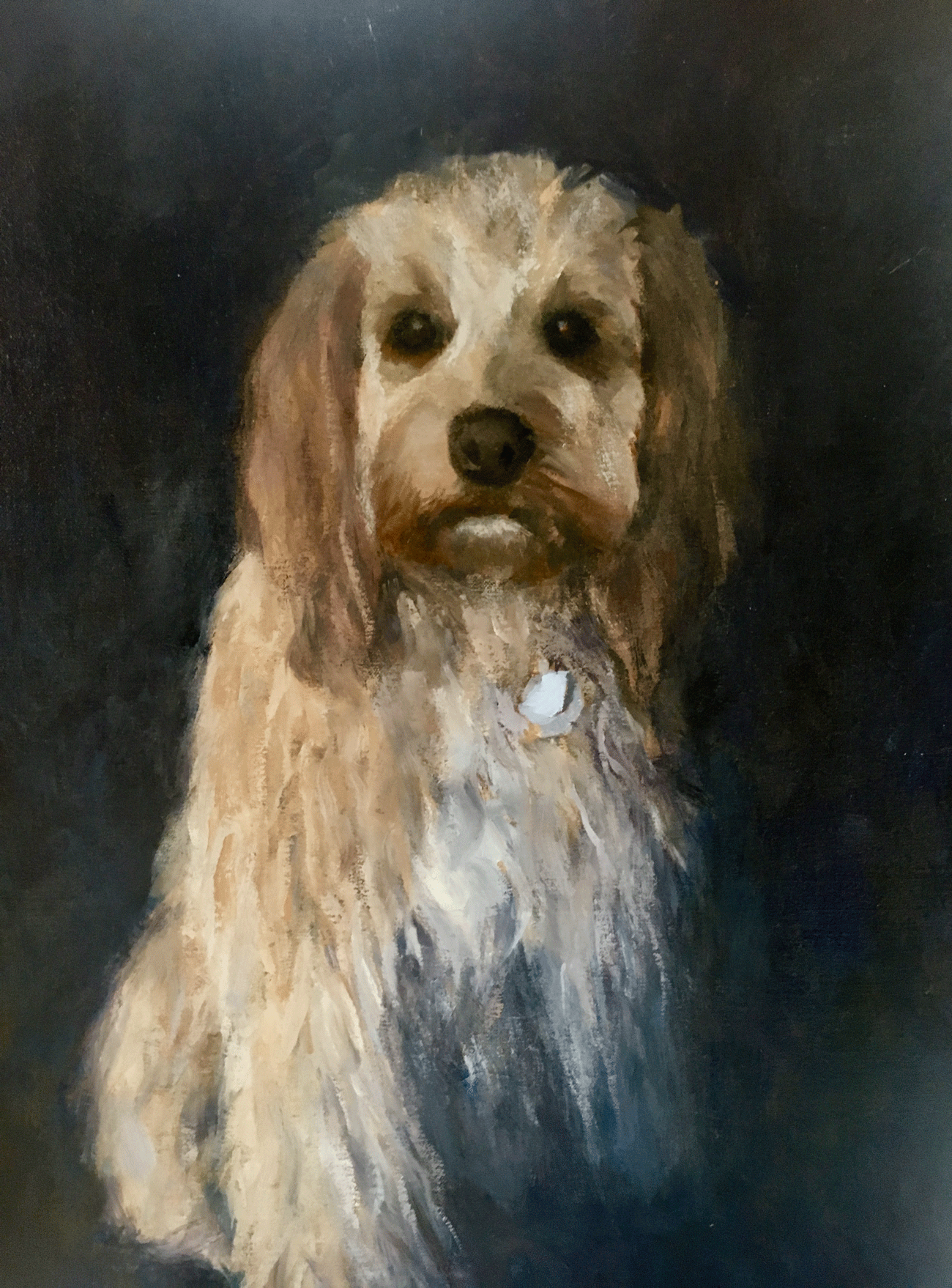 """Katie"" - Golden Doodle Commission, Oil on Panel March 2019 (20"" x 24"")"