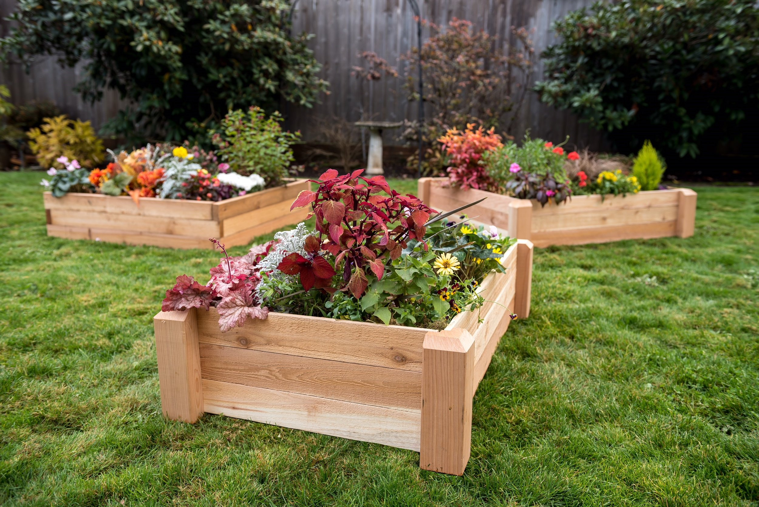 raised beds 3'x6', 2'x4' and 4'x4'
